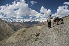 Ladakh Trekking im indischen Himalaya