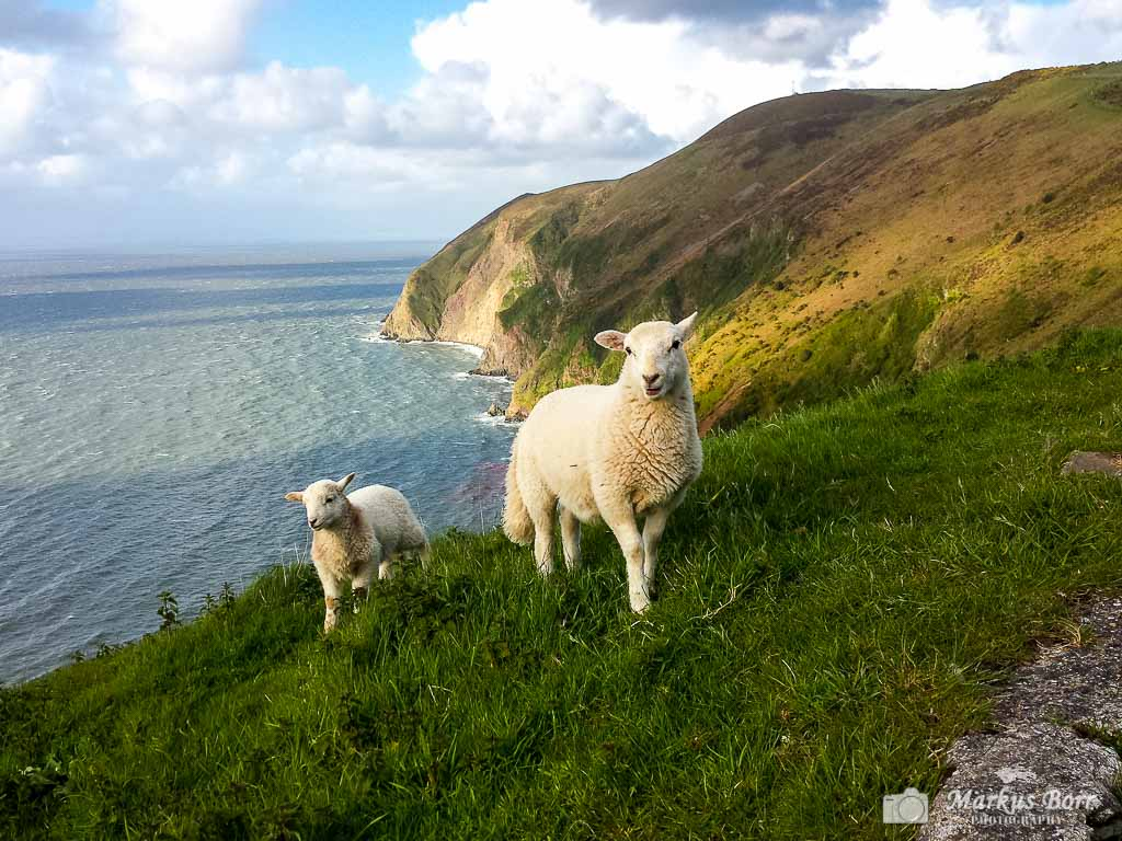 Küste bei Lynmouth