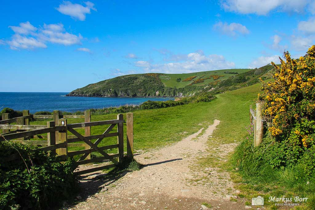 South West Coast Path in Looe