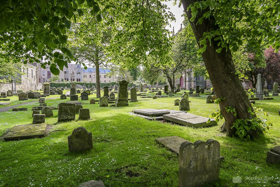 Dunfermline Abbey und Palace, Garten