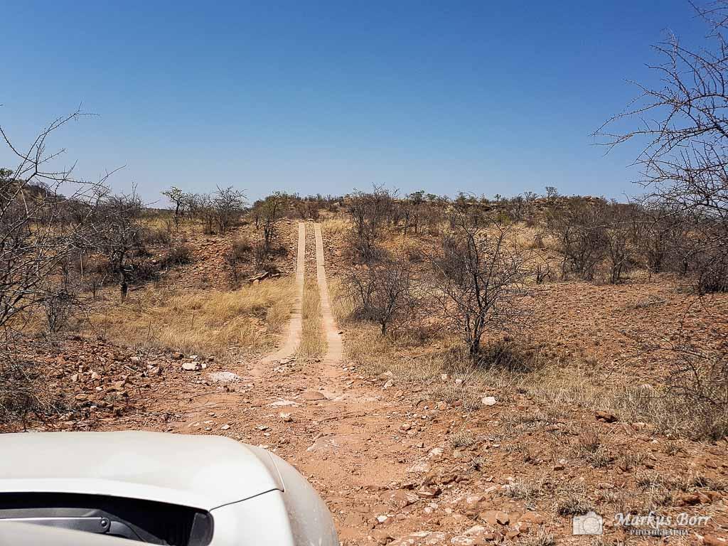 Geländefahrt im Mapungubwe