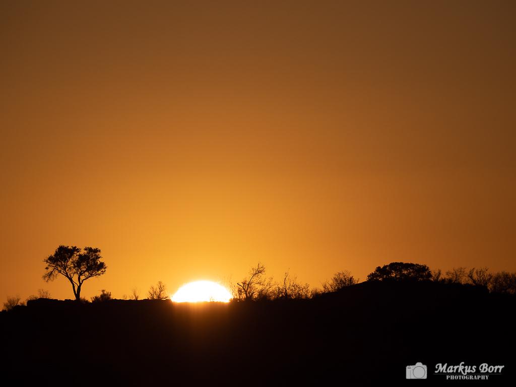 Sonnenaufgang im Mapungubwe
