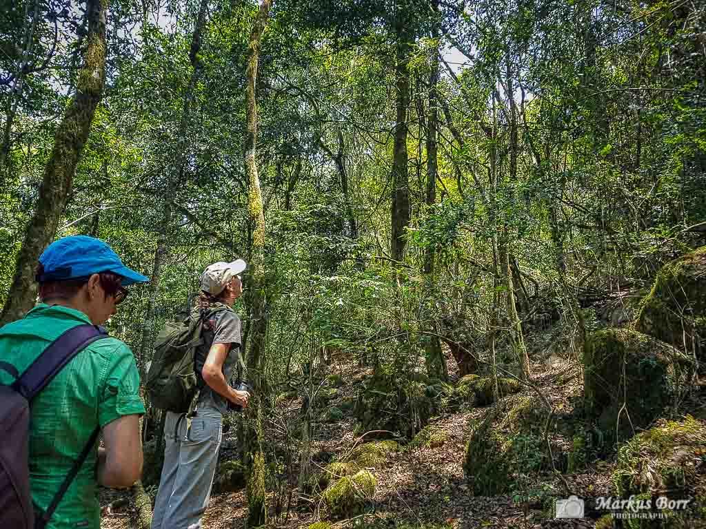Wanderung Sigurwana